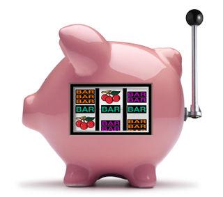 Pig gambler